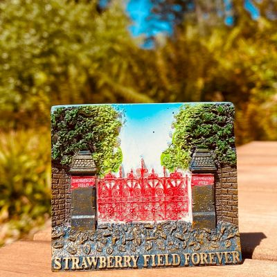 STRAWBERRY FIELD FOREVER MAG