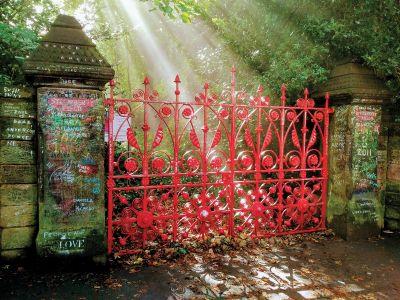 SF GATE IMAGE PRINT